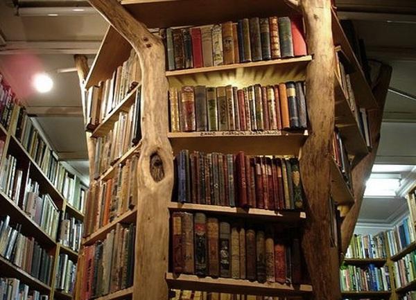 tree-trunk-bookshelf-3