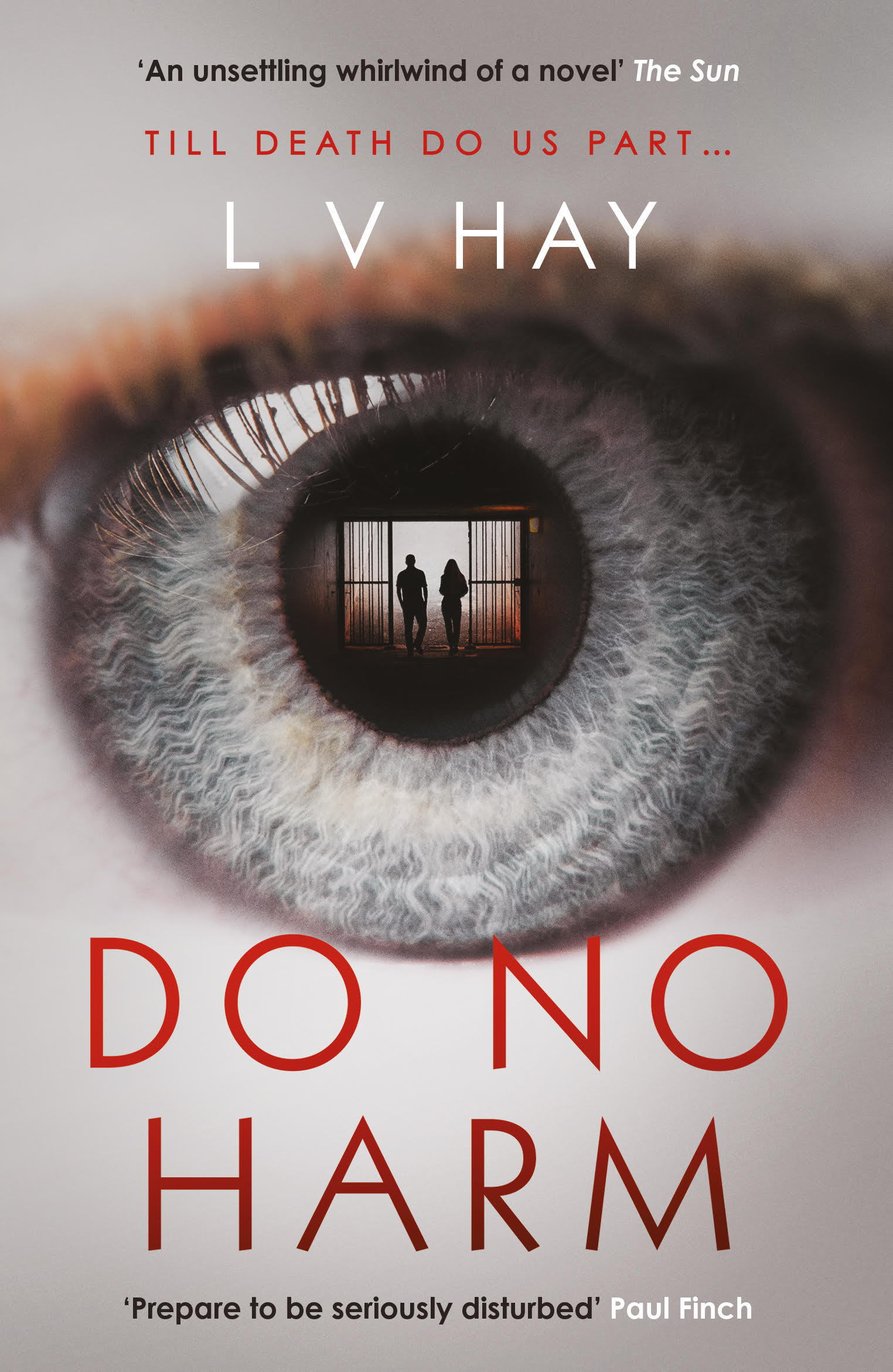 Do No Harm book by Lucy V Hay